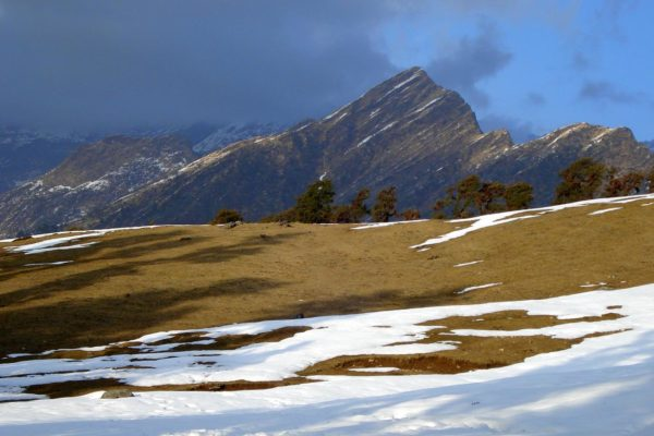 The Chopta Chandrashila Tungnath Trek